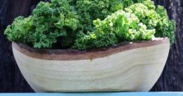 Grünkohlsuppe nach Omas Rezept selber machen